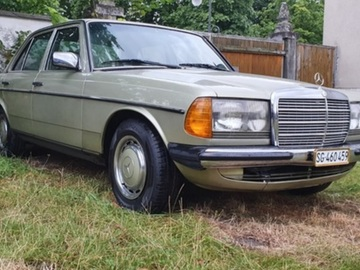 Renting out: Mercedes Benz w123 230E